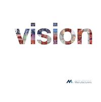 Vision-NAM